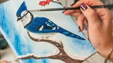 Blue Jay on the Snowy branch - Acrylic painting  Homemade Illustration (4k)