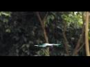 Селфи дрон