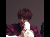 look at how happy he was when he got his alpacca plushie then he got scared by the bubbles baby