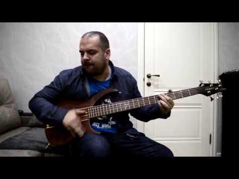 Антон Давидянц - Peavey Cirrus 5 Bubinga-Walnut 1999 USA