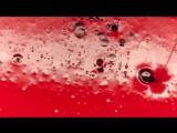 Джиган feat. Стас Михайлов - Любовь-Наркоз-title=Джиган feat. Стас Михайлов - Любовь-Наркоз - 720HD - [ VKlipe.com ]