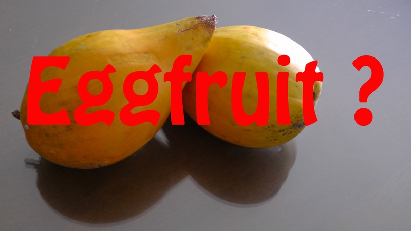 CHECK THIS STRANGE FRUIT EGGFRUIT CANISTEL FRUIT !