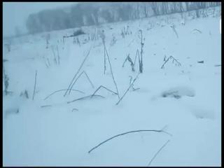 Кадры с места падения Ан-148. Видео очевидцев.