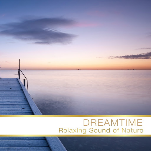 Fly Project альбом Dreamtime