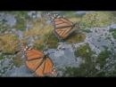 МЕТАМОРФОЗ Красота и дизайн бабочек