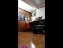 Tin Lin - Live
