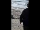 Ақтау 16 желтоқсан Каспий