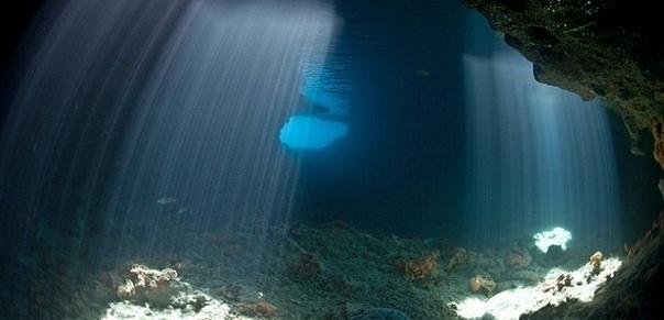 На дне Тихого океана обнаружили непонятные огромные следы Робот-ныряльщик английского происхождения, опустившийся недавно на дно Тихого океана, обнаружил там странные гигантские следы,