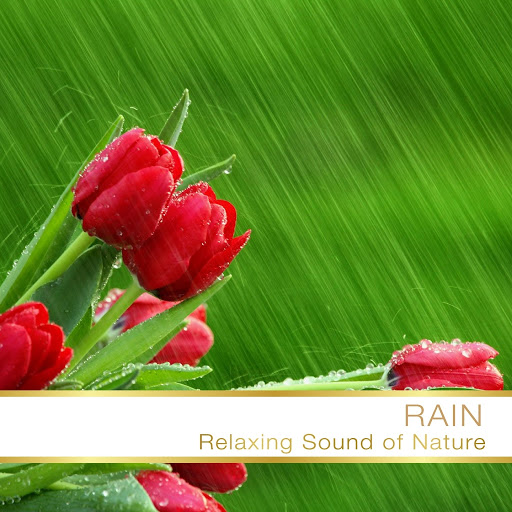 Fly Project альбом Rain Relaxing Sound Music Of Nature