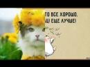 Video 27e14f94e0a0587ab5773308f85b5d39