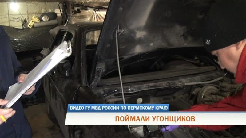 Машины и марихуана в Перми задержали банду автоугонщиков