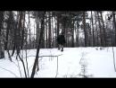 Охота на волка с голыми руками _ Выживание в лесу с дядей Борей _ Приколы на охоте