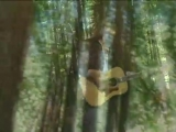 Kenny Loggins - Conviction of the Heart (Outside-from the Redwoods)