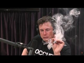 Илон Маск покурил марихуану в прямом эфире NR