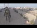 Syrian Hunter (Ру$$kие)