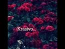 Krasivo.mp4