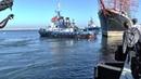 STS Sedov wychodzi w morze.