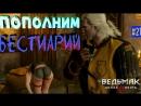 ⚔The Witcher 3 - Пополним бестиарий! 21 ролевой экшн рпг rpg