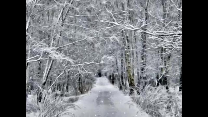 Снег идёт. (Борис Пастернак). Сергей Никитин.