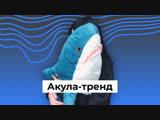 Акула-тренд