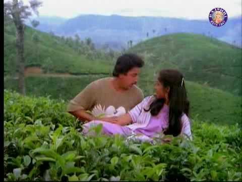 Kamal Haasan Revathi in Singallathu Chinna - Punnagai Mannan