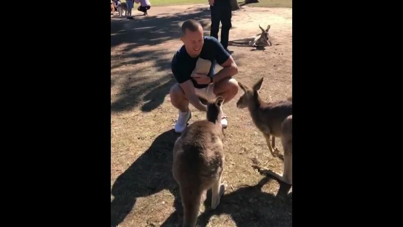 Жорж Сент Пьер знакомится с Австралией