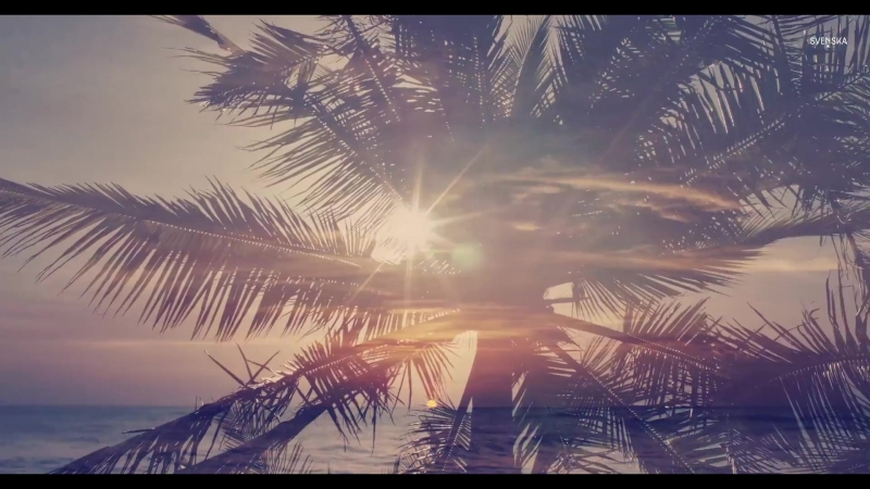 WANDER IN PARADISE | Treasured Memories from Playa Junquillal, Guanacaste, Costa Rica