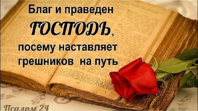 Бог Который рядом Ольга Беглец