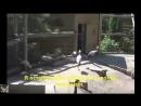 цыганский. варавской клип журавли клип от (золотой)