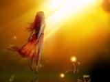 Мула мантра Мантра просветления (исполняет Deva Premal)