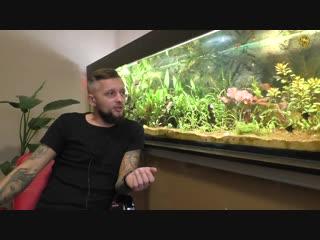 Чёрная борода в аквариуме - водоросли в аквариуме.