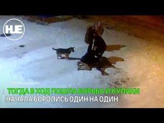 В Ельце пьяные драки и акты вандализма попали на видео