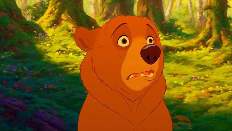 Кенай узнаёт что он медведь Братец медвежонок 2003