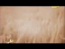 Величайшие злодеи мира Голощёкин ШАЯ ИСАКОВИЧ Голодомор в Казахстане погибло 2 м