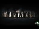 В поисках деревни и прочая дичь [Darkwood 4]