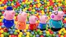 Peppa Pig videos. George, Mummy and Daddy Pig.