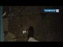 Холмогорская. Потоп в подъезде пятиэтажки