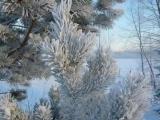 Фредерик Шопен. Вальс № 7. Зима