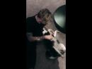 Лорис Кариус со своей собачкой 🐶