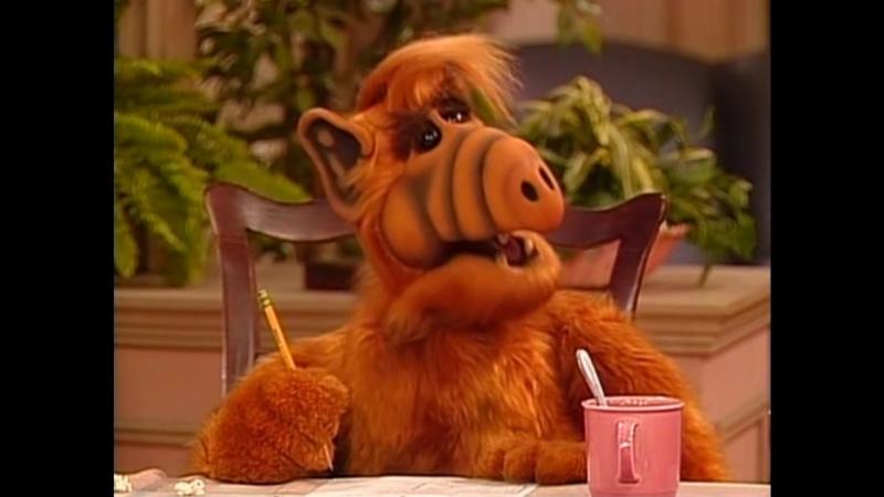 Alf Quote Season 2 Episode 11_Гражданство