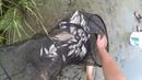 Три дні на р Горинь Фідер Спінінг Рибалка на живця Частина 2