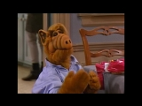 Alf Quote Season 1 Episode 3_Не был