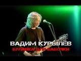 Вадим Курылёв - Булавка для бабочка
