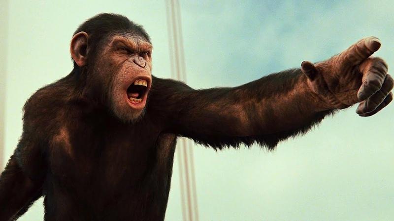 Сражение на мосту. Обезьяны против людей. Восстание планеты обезьян (2011) год.