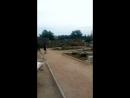 амфітеатр ,залишки предметів
