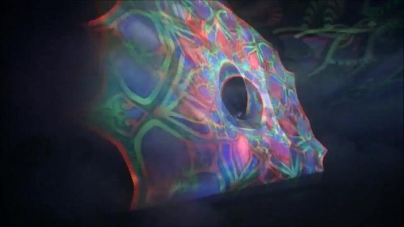 Coyle Kruger - The Witness (Phaxe Pras Remix)