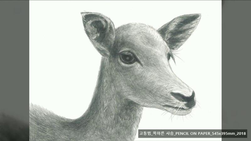 [밀알복지재단]_재능기부로 오디오 가이드에 참여한 NCT(재현, 쟈니, 유타, 쿤)_일48