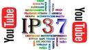 IP37 - канал о мотобуксировщиках и про мотобуксировщики!
