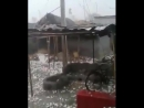 Intense hailstorm reported in Gujarat, India on July 5! Report via partners