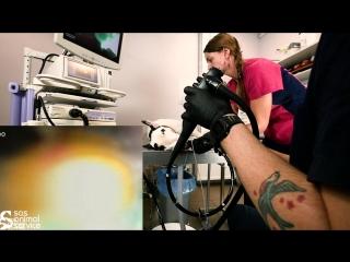 Гастроскопия - эндоскопическое исследование пищевода и желудка у собак и кошек.
